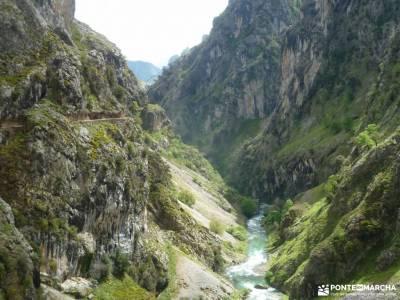 Ruta Cares-Picos de Europa; rutas grazalema viajes organizados para solteros tren a cotos senderismo
